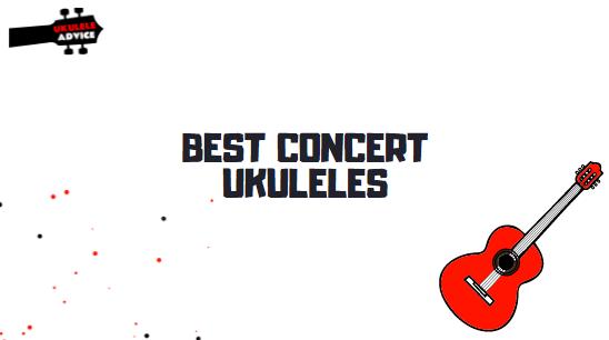 Best Concert Ukuleles for Beginners